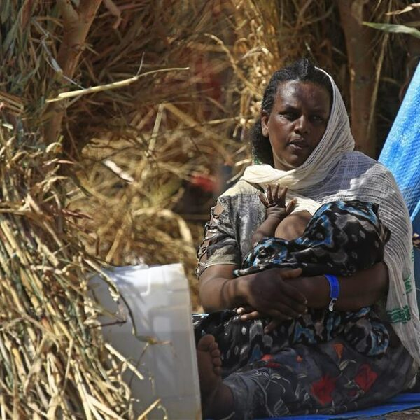 Podcast De Dag: de gruwelverhalen van gevluchte Ethiopiërs