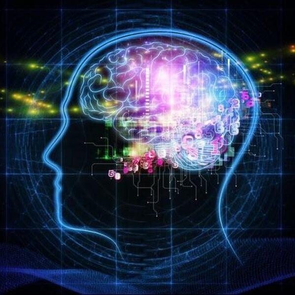 Zo krijg je het brein van een geheugenatleet
