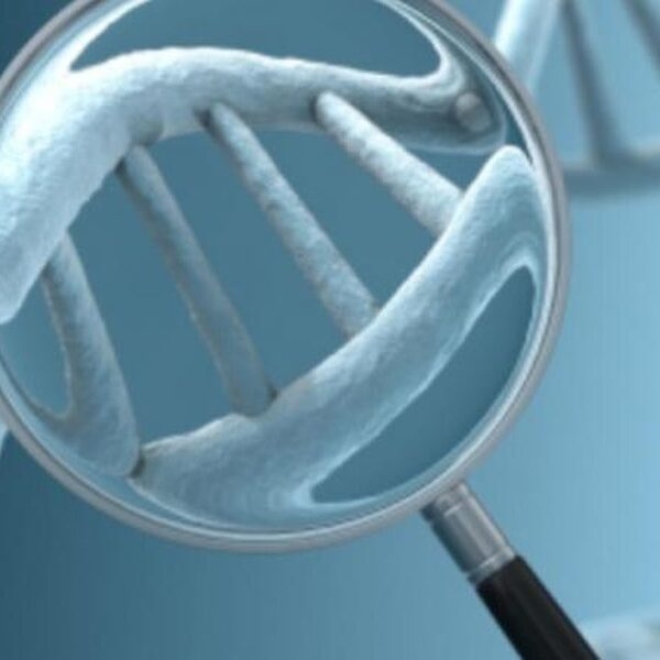 DNA-test ontmaskert zaaddonor