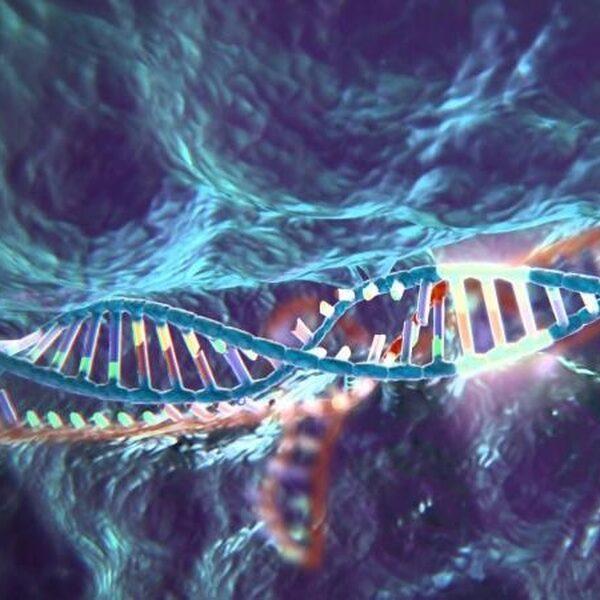 Revolutionaire gentechniek voor het eerst op mensen getest