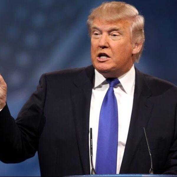 Klimaat-expert: 'Trump is een heel naïeve man'
