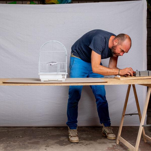 Beeldend kunstenaar Bram Ellens: 'Het is gewoon knutselen wat ik doe'