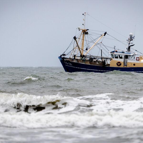 'Als Timmermans zijn zin krijgt, betekent dat het einde van de Nederlandse visserij'