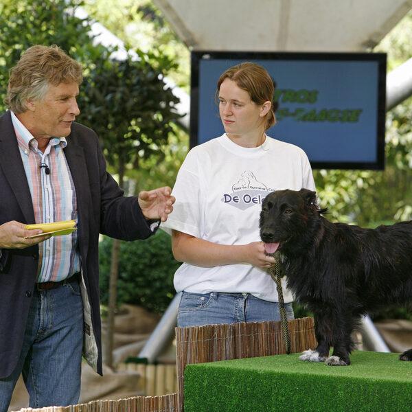 Martin Gaus over wat de nieuwe dierenwet betekent voor honden, katten en konijnen