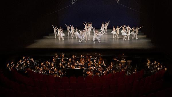 11 44ced3e07c orkest 0965 lr Het Balletorkest Inga Powilleit